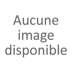cocotte rétro AM425R